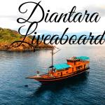 """Paket Wisata Di Labuan Bajo Bersama """"DIANTARA LIVEABOARD"""""""